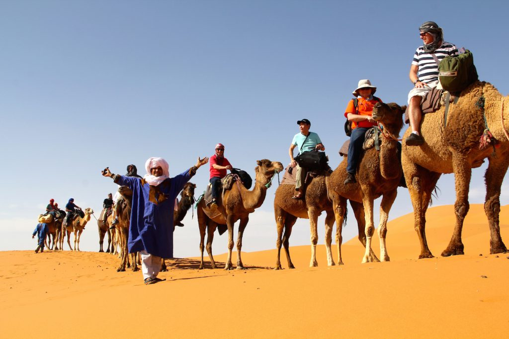 Morocco; Gay Travel; Out Adventures; Camels; Humps; Desert; Sahara; Berber
