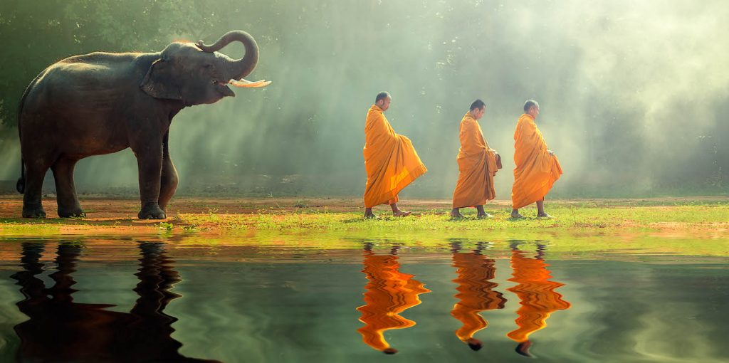 An Asian elephant walks behind three Buddhist monks beside a pool of water in Thailand.