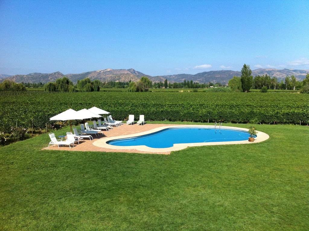 Hotel TerraViña's adorable pool, right beside the vineyards.