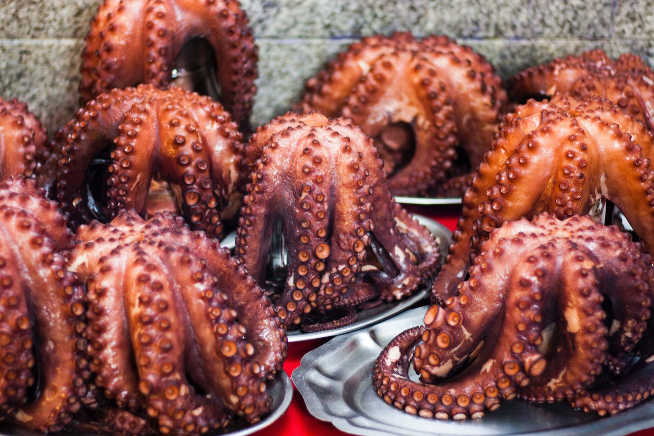 A bunch of whole Croatian octopi are roasted and served on silver platters.